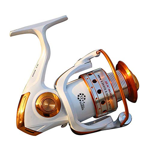 Fishing Reel 12 + 1 Lightweight, Extremely Smooth, Powerful/Right Interchangeable Handle with Double Brake System,9000