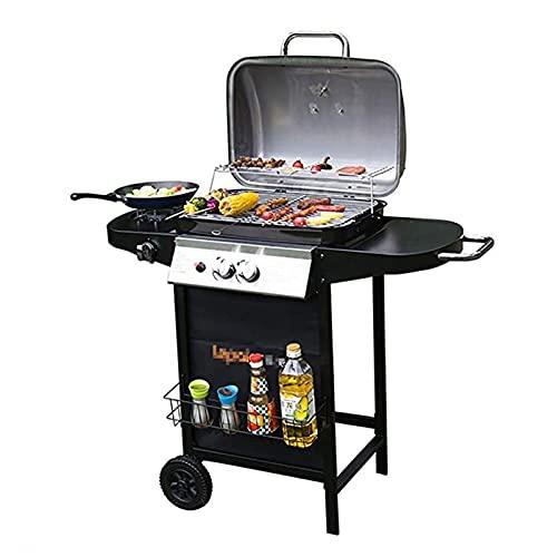 FEANG Grill Outdoor Barbecue Grill Gas Grill Balkon Ofen Gas für 3-5 Personen Edelstahl Raucher BBQ für Picknick Garten Terrasse Camping Reise Grillwerkzeug