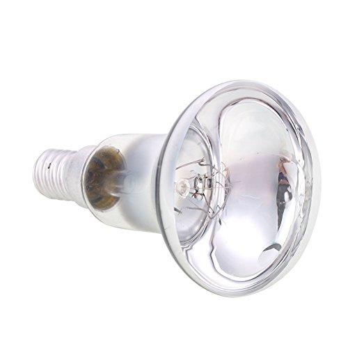 Haihuic Ersatz 40W Lampe, Scheinwerfer E14 Glühbirne für Lavalampe und Beleuchtung