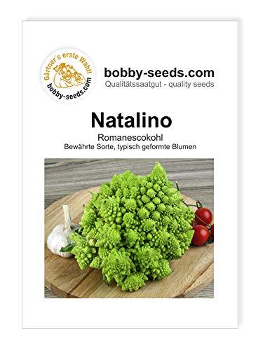 Natalino Romanesco Samen von Bobby-Seeds Portion