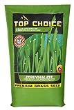 Top Choice 100304 Perennial Rye 10LB, Assorted