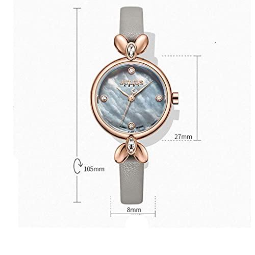 WYZQ Retro Correa Clásico Simple Cuero Cuarzo Impermeable Shell Relojes de Mujer Relojes de Mujer (Color: 4) (Color: 5), Relojes