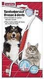 BEAPHAR – Brosse à dents, haleine fraîche pour chien et chat – Anti plaque & anti tartre – Nettoyage complet – Pratique & facile à utiliser – Pour toutes les tailles/races de chiens & chats – 1 brosse