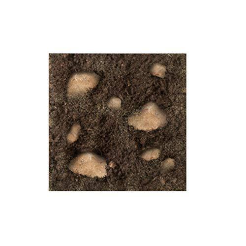 VIALCA TERRICCIO SPECIFICO per CAPPERO - Miscela Perfetta per piantare e rinvasare Piante di cappero - terriccio Originale per Piante di Capperi Fatte in casa, Misto Torba e tufo Sabbia - 4L