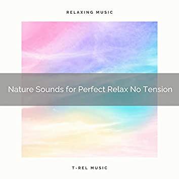 Nature Sounds for Perfect Relax No Tension