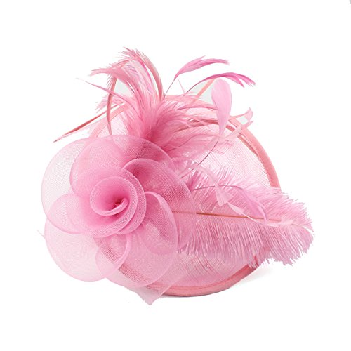 Mesh sluier hoed haarspeld jaren 20 vintage veren hoofdtooi voor vrouwen (roze)