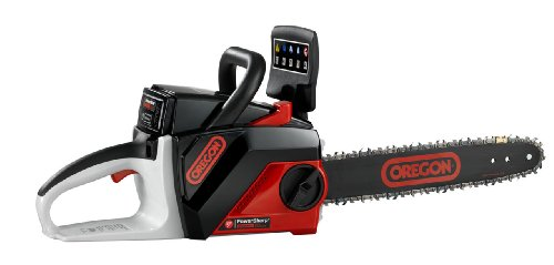 Cordless 40 Volt Chain Saw Kit with 1.25 Ah Battery Pack
