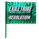 EXILE TRIBE PERFECT YEAR LIVE TOUR TOWER OF WISH 2014 THE REVOLUTION フラッグ グリーン