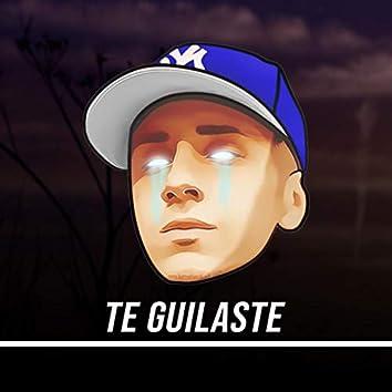 Te Guillaste (Remix)
