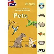 Lernen an Stationen im Englischunterricht: Pets (inkl. CD)