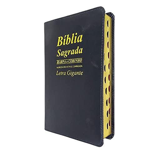 Bíblia Sagrada Com Letra Gigante Ed Promessas - Preta
