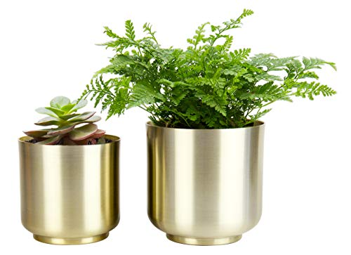 Vixdonos Brushed Gold Plant Pots Indoor, 6/5.2 inch Pack 2 Metal Planter Flower Pots with Drainage Hole (Champagne Gold)