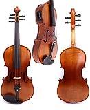 YUXIwang Violine 4/4 Neue 5 Saite Electric Acoustic Violine Massivholz Nizza Sound Dunkel Rot Blau Schwarz Instrumente ( Color : As pic5 )