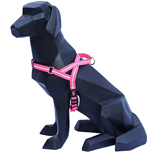 WIGZI Weatherproof All Conditions Reflective Padded Harness with Adjustable Neck and Chest Durable - EZ ON/Off NO Step in