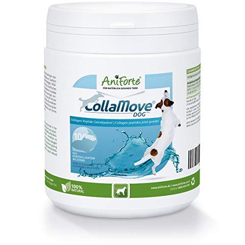 AniForte CollaMove Collagen Joint Powder for chiens 250g - Poudre de pêche de haute qualité, poisson sauvage pêché contrôlé, peptides de collagène pour les articulations, agilité et joie de mouvement