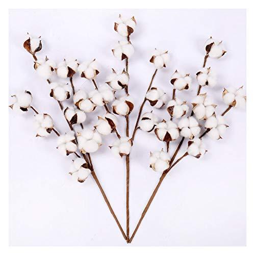 Cotton Stems - 20 Inch Tall (3 Stems/Pack) White Cotton Flowers Bolls Farmhouse...