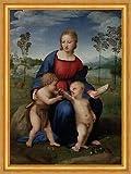 Madonna of The Goldfinch Raffael Maria Jesus Livre pour enfant Fink B A3 03143 encadré