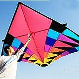 ZFLL Cometa Juguetes voladores Delta Kite Grandes Ripstop Nylon Sport Kite Reel Dragon Kite, 3.7m Kite