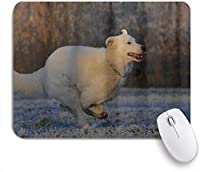 NIESIKKLAマウスパッド 羊飼いの犬のレースの冬の牧草地 ゲーミング オフィス最適 高級感 おしゃれ 防水 耐久性が良い 滑り止めゴム底 ゲーミングなど適用 用ノートブックコンピュータマウスマット
