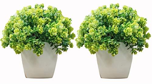 Decorating Lives Set of 2 Mini Cute Artificial Plants Bonsai Potted Plastic Faux Green Grass