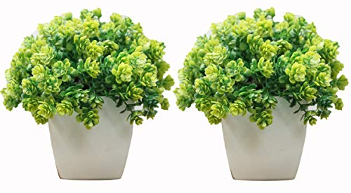 Decorating Lives Set of 2 Mini Cute Artificial Plants Bonsai Potted Plastic Faux Green Grass