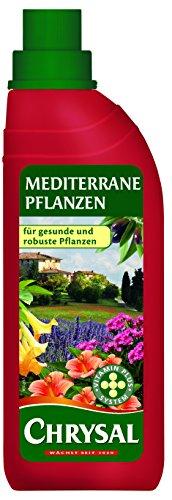 Chrysal Flüssigdünger Mediterrane Pflanzen, 500 ml