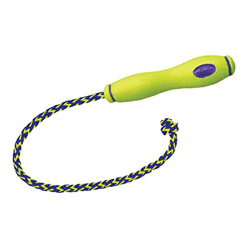 KONG - AirDog Squeaker Fetch Stick with Rope - Squeaky Bounce and Fetch Toy, Tennis Ball Material - Large