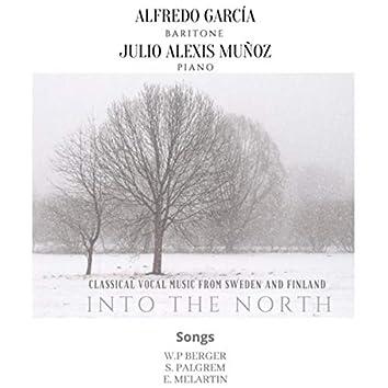 Into the North (Live)