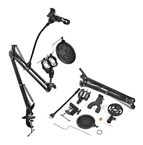 Luling Arts Desktop Microphone Stand with Metal Base Fixed,Mic Pop Filter for Radio,Broadcast,Studio and Recording (Mic Arm)