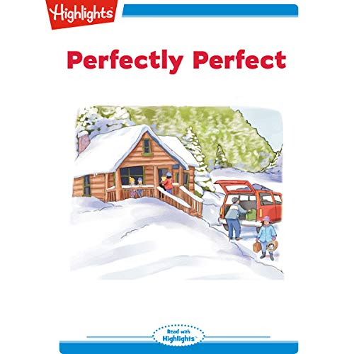 Perfectly Perfect copertina