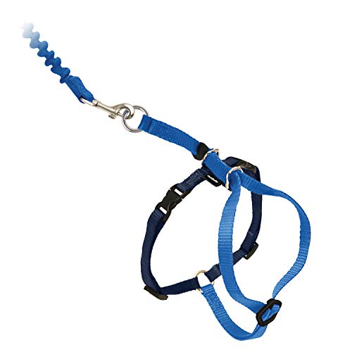 PetSafe Come with Me Kitty Harness and Bungee Leash, Harness for Cats, Large, Royal Blue/Navy