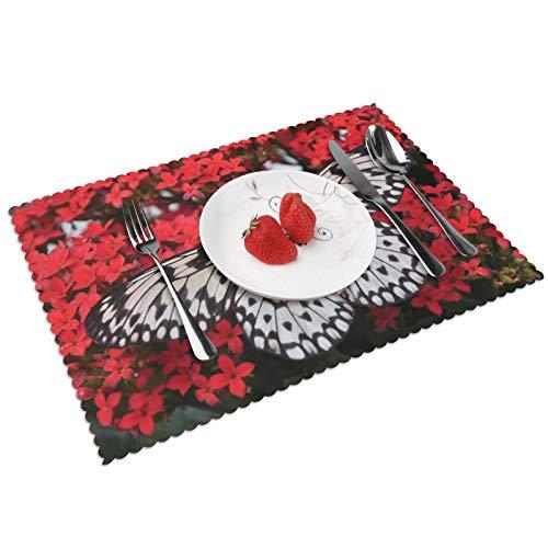 GHRSGBHST Durable Juego de 4 manteles individuales lavables de 30 x 45 cm, antideslizantes, resistentes al calor, para cocina, comedor, fiesta, decoración del hogar, alas de insectos de mariposa