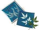 SUNPRINT Kit PHOTOSENSITIVE Paper X12