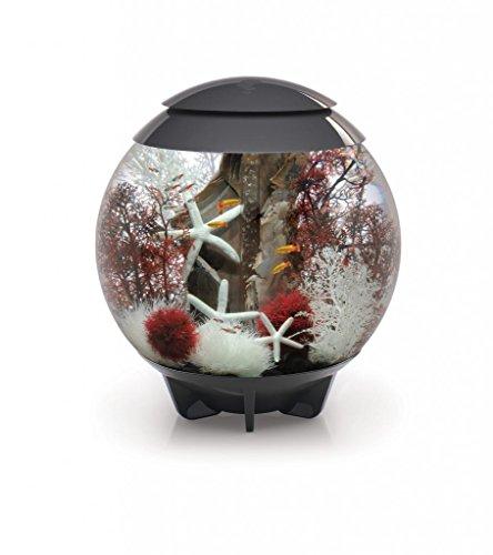 biOrb HALO 60 Aquarium with Moonlight LED Light – 16 Gallon, Grey