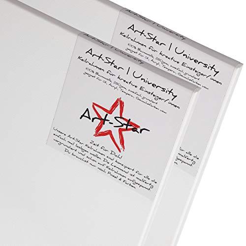 Art-Star 2X University KEILRAHMEN 60x80cm | Leinwände auf Keilrahmen 60x80 cm | Leinwandtuch vorgrundiert, malfertige bespannte große Keilrahmen mit Leinwand zum malen