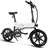 FIIDO D2S Folding Electric Bike Ebike, 16'' Electric Bicycle 15Mph with 36V 7.8Ah Lithium-Ion Battery, 250W Motor and Shinmano Professional Rear 6 Speed Gears, Gray