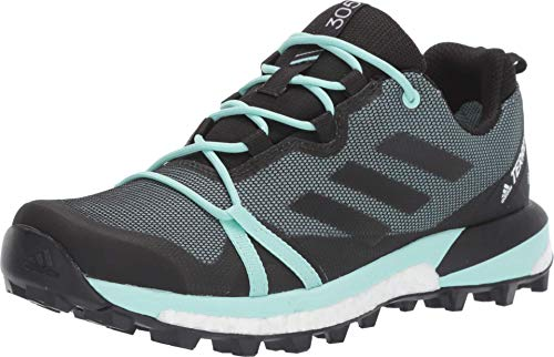 adidas outdoor womens Terrex Skychaser Lt Gtx Walking Shoe, Ash Grey/Black/Clear Mint, 9.5 US