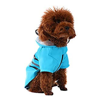Best small dog raincoat Reviews