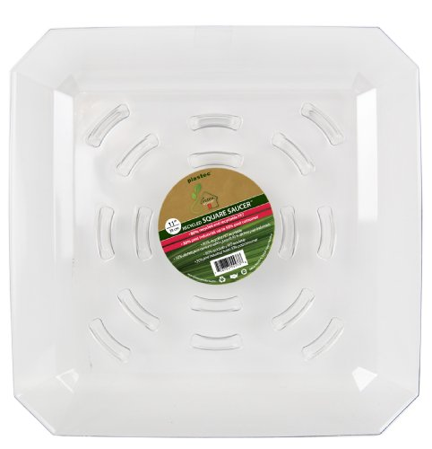 Plastec SQR11 Square Recycled Plant Saucer, 11-Inch