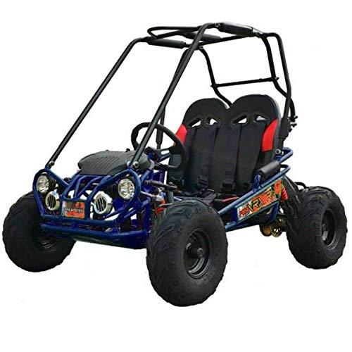 X-PRO 163cc Kid Size Go Kart Youth Go Kart Dune Buggy Kids Go Cart Gokart 2 Seater Go Kart (Blue)