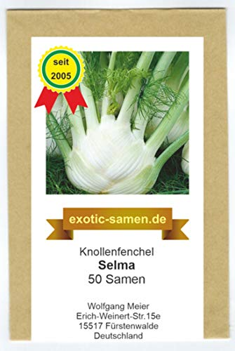 Knollenfenchel, Gemüsefenchel - Selma - 50 Samen