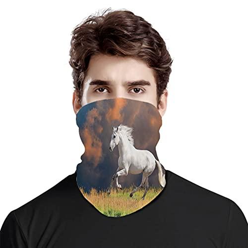 FULIYA Gran cara cubierta bufanda protección cuello, caballo andaluz con un majestuoso fondo de nube polvo fuerte deseos, variedad bufanda de cabeza unisex