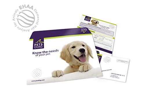 Pets Diag EHAA Test Elementare Haaranalyse für Tiere, Fellmineralanalyse zusammen mit einer schriftlichen Interpretation des Ergebnisses.