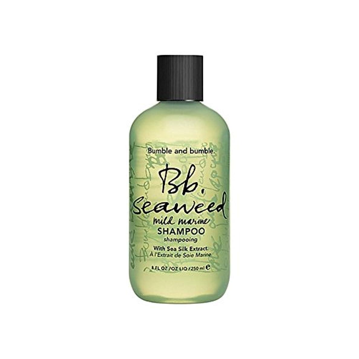 共感する比べるどれBumble & Bumble Seaweed Shampoo 1000ml (Pack of 6) - バンブルアンドバンブル海藻シャンプー千ミリリットル x6 [並行輸入品]