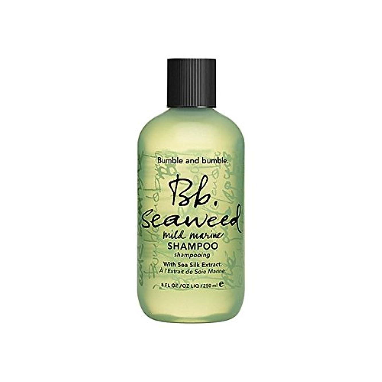 損なう期待する見るBumble & Bumble Seaweed Shampoo 1000ml - バンブルアンドバンブル海藻シャンプー千ミリリットル [並行輸入品]