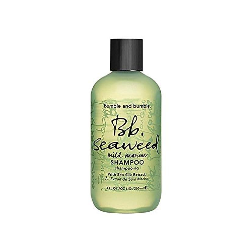 継続中皮結核Bumble & Bumble Seaweed Shampoo 1000ml - バンブルアンドバンブル海藻シャンプー千ミリリットル [並行輸入品]