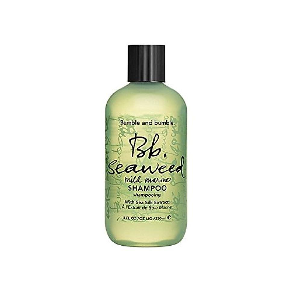 プロテスタント壁チロバンブルアンドバンブル海藻シャンプー千ミリリットル x2 - Bumble & Bumble Seaweed Shampoo 1000ml (Pack of 2) [並行輸入品]