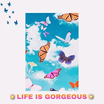 Life Is Gorgeous