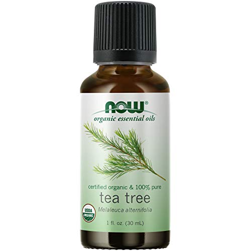NOW FOODS Organic Tea Tree Oil 1 Oz, 1 FZ
