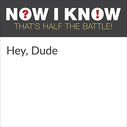 Hey, Dude cover art